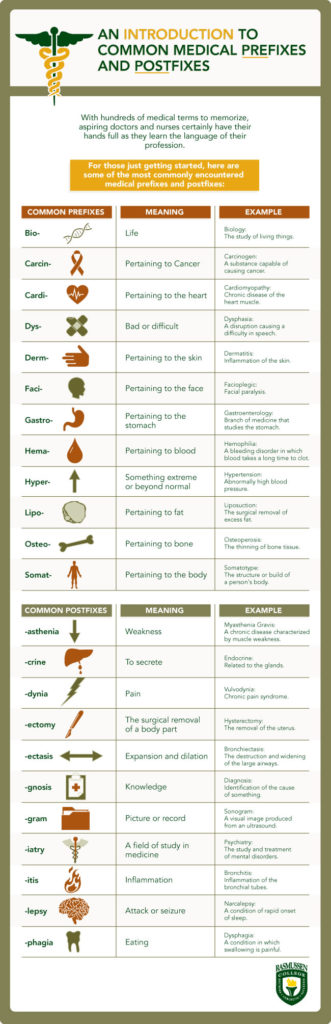Explanation of medical terminology