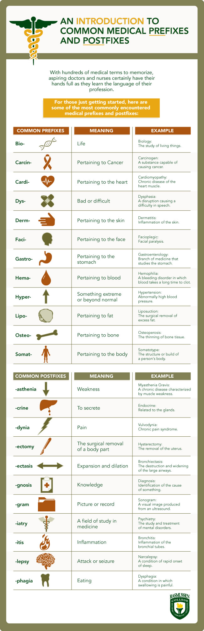 chart outlines common medical terminology with pre and postfix