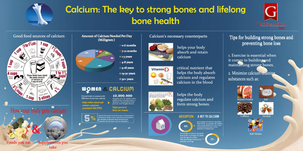 Infographic showing how calcium is the key to strong bones and lifelong bone health